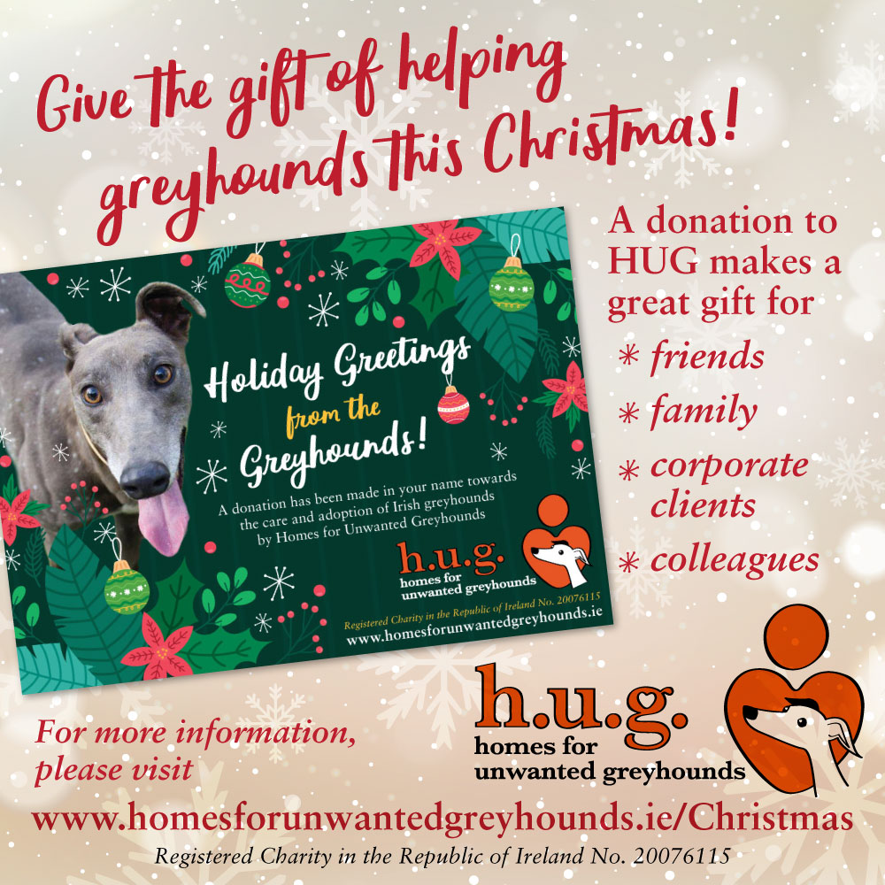 Give the gift of helping greyhounds this Christmas!