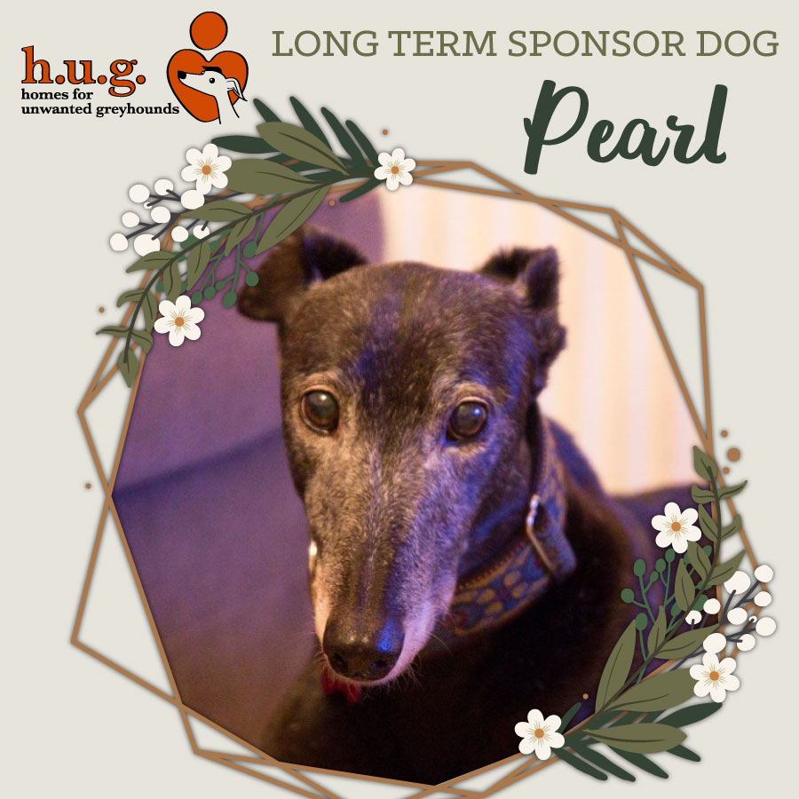Long Term Foster Dog Pearl